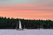 "The sailboat ""Cu na Mara"" sails past Newcastle Island at sunset in Nanaimo Harbour in Nanaimo, British Columbia, Canada"