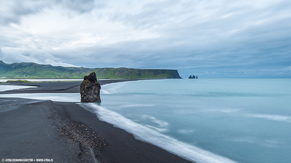 Taken in west-Iceland in Dyrholaey