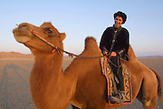 GOBI DESERT, MONGOLIA..08/31/2001.Riding at dawn/sunrise with camels of wealthy herder and local hero Chimiddorj from Tsagan Bulag to Tsagan Gol near Bayangovi. Suzan Samandari of Nomads Tours..(Photo by Heimo Aga).