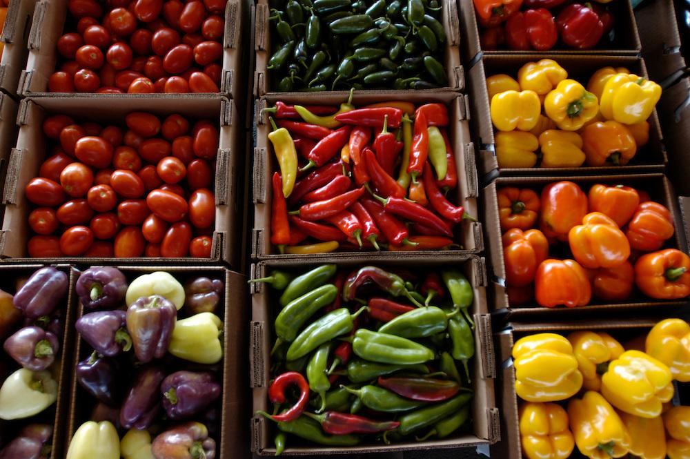 Vegetables/produce for sale at market