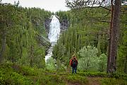 Henfallet er Trøndelags høyeste fossefall (90 meter), og ligger i Tydal.  Elva Hena har sitt utspring i Veunsjøen, som ligger rett nord for den 1 321 moh høye Auspiken (Blåstøten) på grensa mot Holtålen. Elva heter til å begynne med Veunna, men skifter navn i det den renner nordover og inn i Hendalen. <br /> Vel en kilometer ovenfor (sør for) fossen renner Hena sammen med Svartåa, som kommer fra Svartåsjøen, en liten fjellsjø i knapt 700 meters høyde, omgitt av myrer og fjellbjørkeskog. Etter samløpet begynner elva å ta fart, og ferden kulminerer med at vannet velter utfor kanten av det 90 meter høye Henfallet og ned i et dypt gjel, omgitt av barskog. Området omkring fossen er mer eller mindre konstant påvirket av fossesprut som gir et svært fuktig miljø. Naturreservatet inneholder flere lav- og mosearter som er trua eller sjelden på nasjonal og/eller nordisk basis. I tillegg finnes mange andre arter som bare er velutviklet i naturskoger med lang kontinuitet, med læger og stående død ved. Kombinasjonen av en rekke kystarter så langt øst, samt mange fjellarter og delvis østlige arter gjør området spesielt. Dette sammen med de landskapsmessige forhold gjør at området er karakterisert som nasjonalt verneverdig, og derfor med i forslag til verneplan for barskog i Midt-Norge. Berggrunnen består av grågrønn leirskifer på østsida av Hena og i Olandersdalen, mens det på vestsida av Hena er overveiende grågrønn fyllitt og gråkvakke. (Tydalkommune/Wiki.)