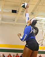 Washington's Aleena Hobbs (16) goes up for a kill during the MVC Volleyball Tournament semifinal game between the Wahlert Golden Eagles and the Washington Warriors at Kennedy High School in Cedar Rapids on Saturday October 13, 2012. Washington defeated Wahlert 25-13, 25-20.