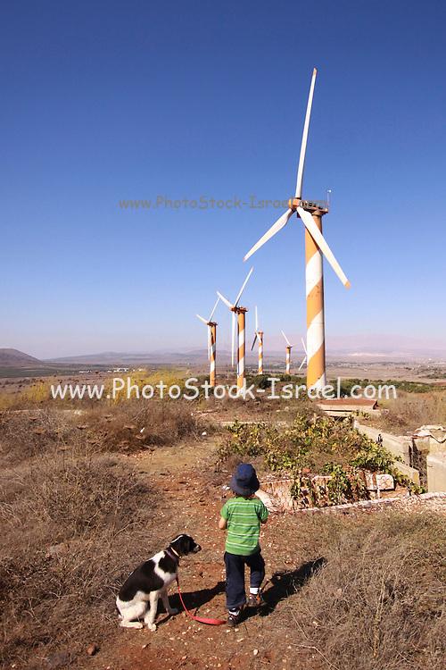 Israel, Golan Heights, View of Wind turbines near kibbutz Ein Zivan,