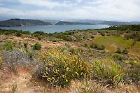 Cachuma Lake, Santa Barbara County, California
