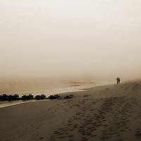 Figures walking along a sandy beach