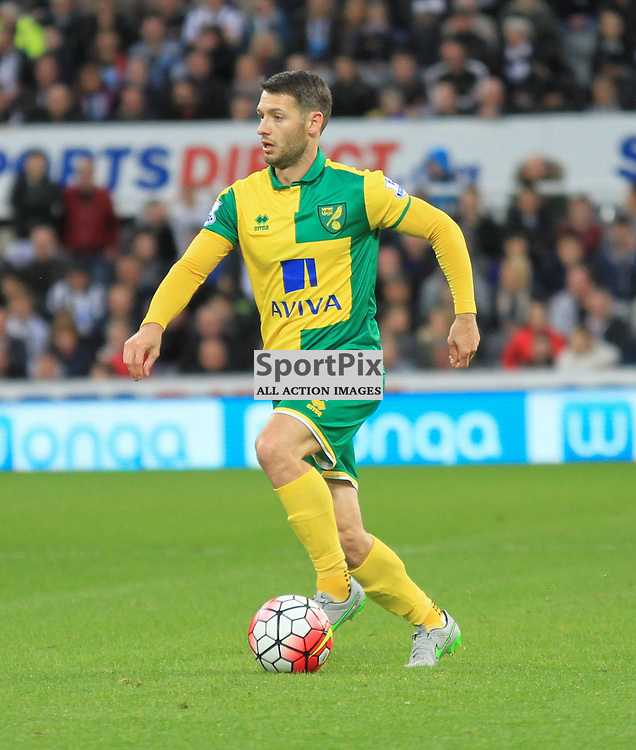 Newcastle United V Norwich City Premier League 18th October 2015; Wes Hoolahan (Norwich, 14)  during the Newcastle V Norwich match, played at St. James Park, Newcastle.