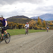 Lynne Weston (front) in action during the New World Tour de Wakatipu bike race on Saturday. Six hundred and ninety people entered the bike race which featured an  exclusive course with breathtaking views from Millbrook Resort in Arrowtown to Chard Farm along the Kawarau River, via the trails and tracks of the Wakatipu basin with distances of 36 kilometres fun riding for recreational bikers and 45 kilometres for elite and sport racers. The event was part of the inaugural Queenstown Bike Festival, which took place from 16th-25th April. The event hopes to highlight Queenstown's growing profile as one of the three leading biking centres in the world. Queenstown, Central Otago, New Zealand. 23rd April 2011. Photo Tim Clayton..