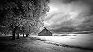 Infrared image of old barn in Palouse