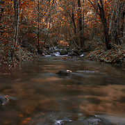 A forest stream in Pang Sida National Park, Thailand.