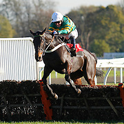 Captain Cutter and A P McCoy winning the 1.35 race