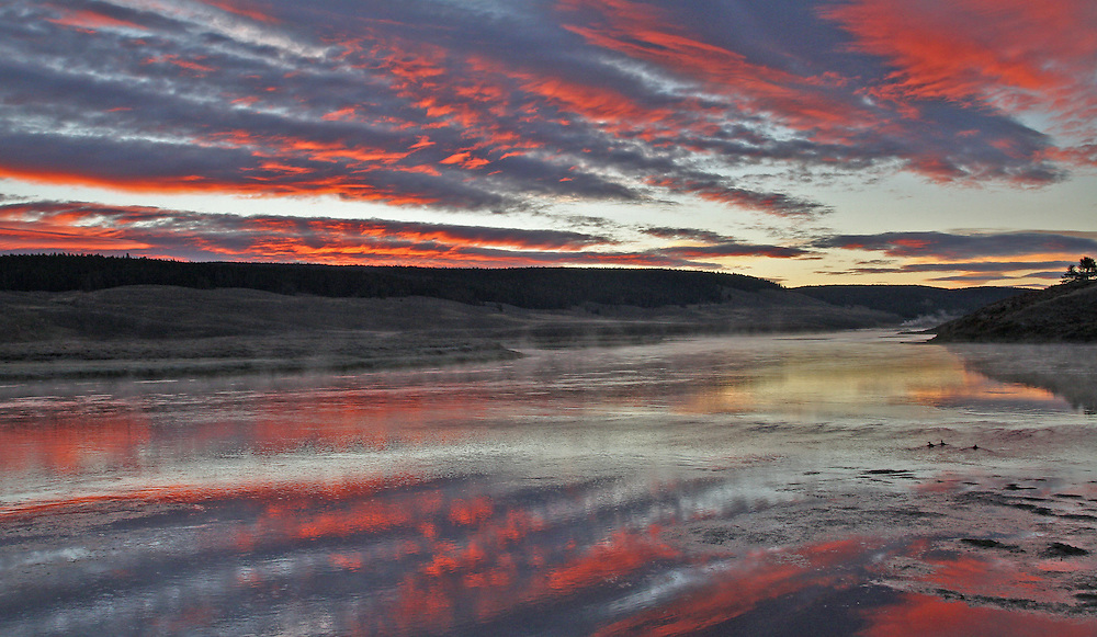 A colorful sunrise lights up the autumn sky in Yellowstone's Hayden Valley.