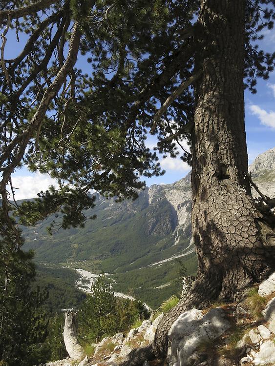 Kenan looking  across the valley of Theth,  towards Qafa Pejes, Albania.