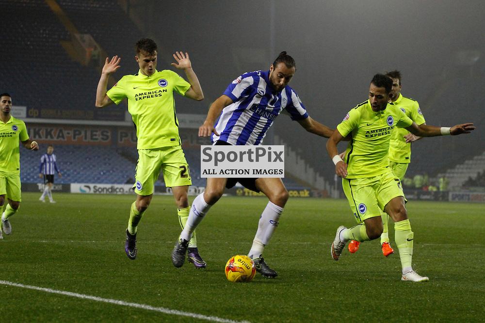Atdhe Nuhiu goes on the attack during Sheffield Wednesday v Brighton & Hove Albion, Tuesday 03 November 2015, Hillsborough Sheffield