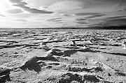Dry lake, Mojave Desert I
