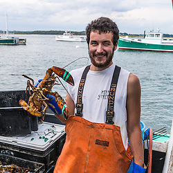 "Sternman Alexander Thomas sorts lobsters aboard ""Barbara Jean"" at Pine Point in Scarborough, Maine."