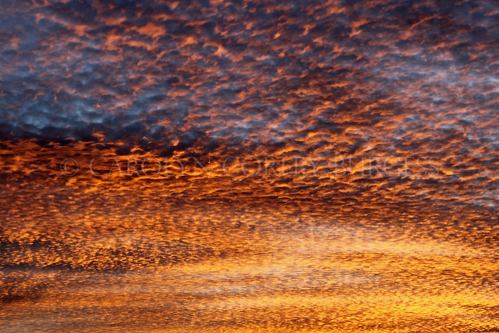 clouds, sunset, winter, December sky, cloudy sky, cloudy sunset, Napa Valley, California