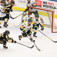 1st year defence man Mackenzie Hutchinson (4) of the Regina Cougars in action during the Women's Hockey home game on January 27 at Co-operators arena. Credit: Arthur Ward/Arthur Images
