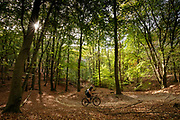 Een mountainbiker rijdt over de trails van Nationaal Park De Veluwezoom bij Rheden.<br /> <br /> A mountain biker is riding the trails of National Park De Veluwezoom near Rheden.