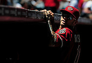 May 1 2011; Phoenix, AZ, USA; Arizona Diamondbacks third basemen Ryan Roberts (24) reacts in the dugout prior to the first inning against the Chicago Cubs at Chase Field. Mandatory Credit: Jennifer Stewart-US PRESSWIRE.