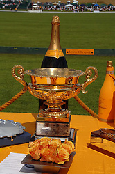 The Gold cup at the final of the Veuve Clicquot Gold Cup 2007 at Cowdray Park, West Sussex on 22nd July 2007.<br />