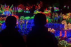 USA, Washington, Bellevue. Garden d'Lights at Bellevue Botanical Garden during the holiday season.