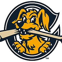 Charleston RiverDogs 2018