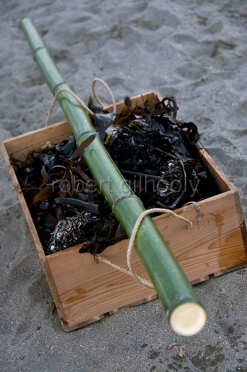 A box filled with seaweed lies in the sand during a purification ritual known as hamaorisai at the start of the 3-day Reitaisai festival in Kamakura, Japan on  14 Sept. 2012.  As a symbol of the purification, priests collect the seaweed from the sea and take it back to the shrine, hanging pieces around the shrine grounds to appease the gods. Photographer: Robert Gilhooly