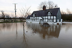 © Licensed to London News Pictures. 01/12/2015. Welshpool, Powys, Wales, UK. A house is surrounded by flood water. The river Severn bursts it's banks at Welshpool and causes extensive flooding. Photo credit: Graham M. Lawrence/LNP