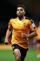 Wolverhampton Wanderers Scott Golbourne during the Sky Bet Championship match at Molineux, Wolverhampton.