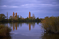 France, Indre (36), le Berry, parc naturel régional de la Brenne, Saint-Michel en Brenne, etang de la Sous // France, Indre (36), le Berry, Brenne, natural park, Saint Michel en brenne, etang de la Sous
