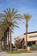 McCormick & Schmicks Grille Restaurant at the Anaheim Garden Walk