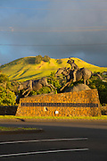Statue of  Champion Paniolo Ikua Purdy at Parker Ranch Center, Waimea, Big Island of Hawaii, artist Fred Fellows