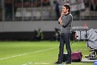 Sylvain RIPOLL - 09.05.2015 -  Metz / Lorient  - 36eme journee de Ligue 1<br />Photo : Fred Marvaux / Icon Sport