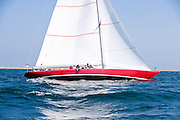 American Eagle, 12 Meter Class, sailing in the Opera House Cup Regatta.