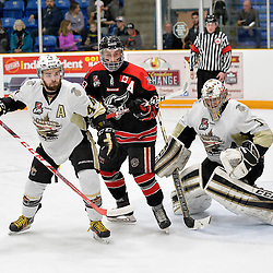 TRENTON, ON  - APR 23,  2017: Ontario Junior Hockey League, Championship Series.  Georgetown Raiders vs the Trenton Golden Hawks in Game 6 of the Buckland Cup Final. Andrew Court #88 of the Georgetown Raiders battles for position with Nick Boddy #44 of the Trenton Golden Hawks in front of goaltender Chris Janzen #1 of the Trenton Golden Hawks during the second period. <br /> (Photo by Shawn Muir / OJHL Images)