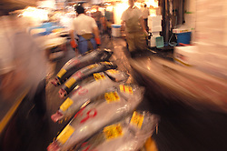 Transporting barrow of fresh tuna at Tsukiji fish Market in Tokyo motion blur