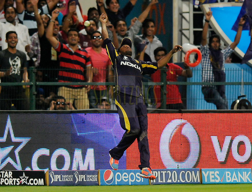 Shakib Al Hasan of the Kolkata Knight Riders attempts a catch to get the wicket of Shane Watson captain of the Rajatshan Royals during match 19 of the Pepsi Indian Premier League 2014 Season between The Kolkata Knight Riders and the Rajasthan Royals held at the Sheikh Zayed Stadium, Abu Dhabi, United Arab Emirates on the 29th April 2014<br /> <br /> Photo by Pal Pillai / IPL / SPORTZPICS