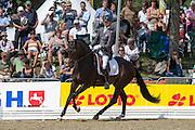 Tom Franckx - IPS Bon Bravour<br /> FEI World Breeding Dressage Championships for Young Horses 2012<br /> © DigiShots
