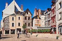 France, Region Centre-Val de Loire, Loiret (45), Orléans, Place du Chatelet // France, Loiret, Orleans, Chatelet square
