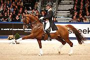 Diederik van Silfhout - Winningmood<br /> KWPN Hengstenkeuring 2013<br /> © DigiShots