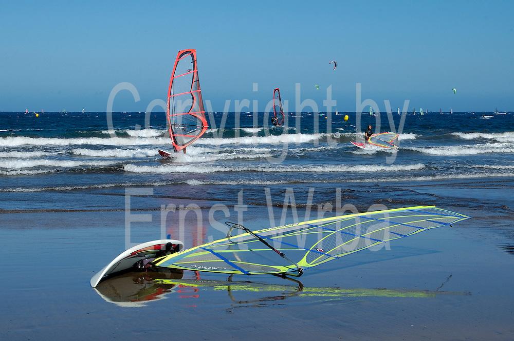 Spanien, Kanarische Inseln, Teneriffa..El Medano, Strand und Meer mit Windsurfern und Kitesurfern.. ..Spain, Canary Islands, Tenerife..El Medano, beach and sea with wind surfers and kite surfers