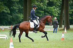Wortel 2013 Jonge paarden