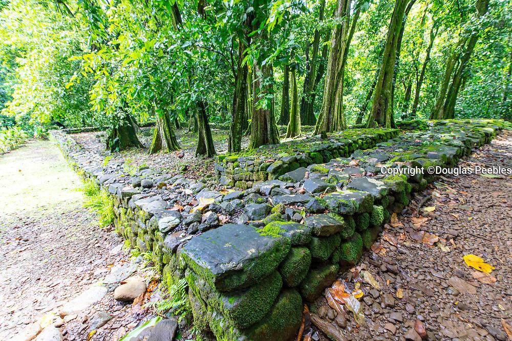 Marae, Temple, Belvredere, Moorea, French Polynesia