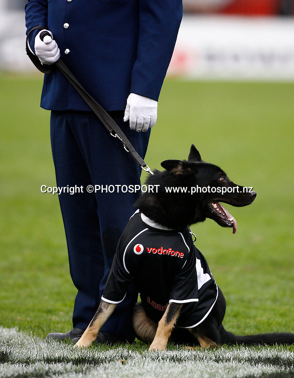 Police Dog demonstration. NRL. Vodafone Warriors v Canterbury Bulldogs, Mt Smart Stadium, Auckland, New Zealand. Sunday 12 July 2009. Photo: Simon Watts/PHOTOSPORT Editorial Use Only