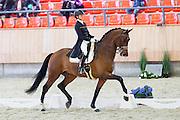 Marlies van Baalen - Dion Johnson<br /> KNHS Indoorkampioenschappen 2016<br /> © DigiShots
