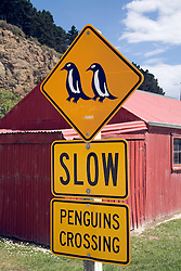 Otago, South Island, New Zealand:   Traffic sign in Oamaru, home to the Oamaru Blue Penguin Project.