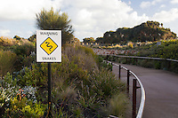 Snake warning sign on the Great Ocean Road, Victoria, Australia