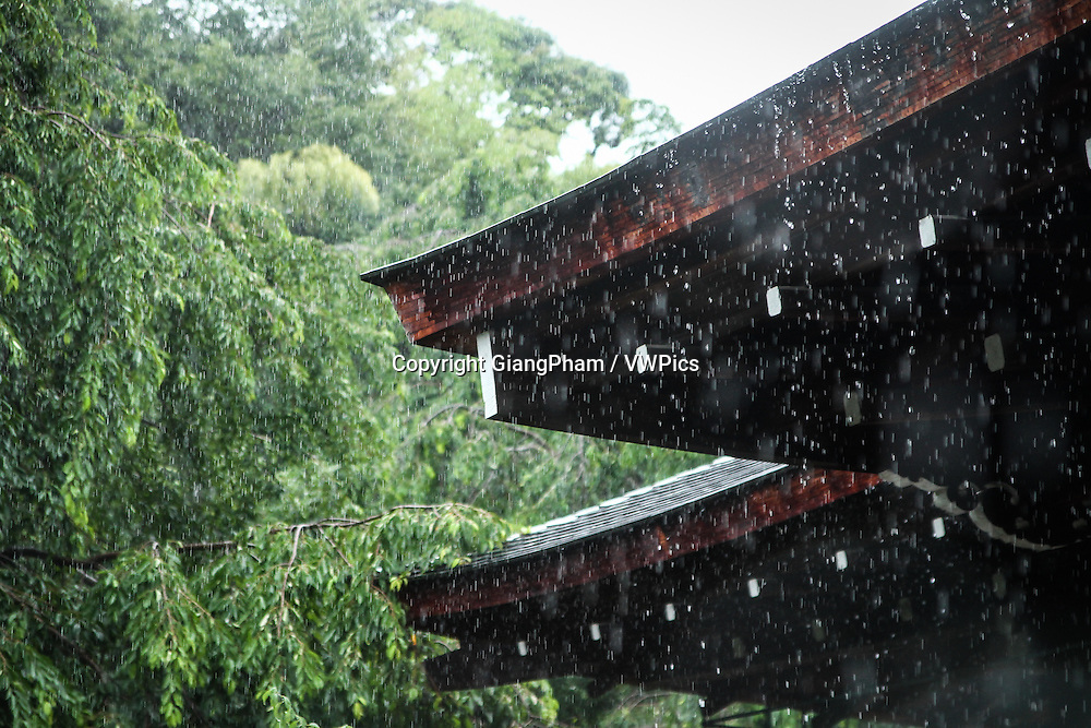 Rain falling on the temple roof in Kyoto Prefectures, Japan