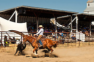 Wilsall Ranch Rodeo, Montana, Ranch Horse Competition, Brian Kimpton, Kimpton Day Help Team