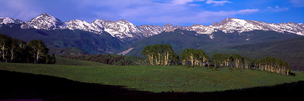 Sawatch Mountain Range in Holy Cross Wilderness and aspen trees from Crooked Pass Road, Springtime, White River National Forest, Colorado